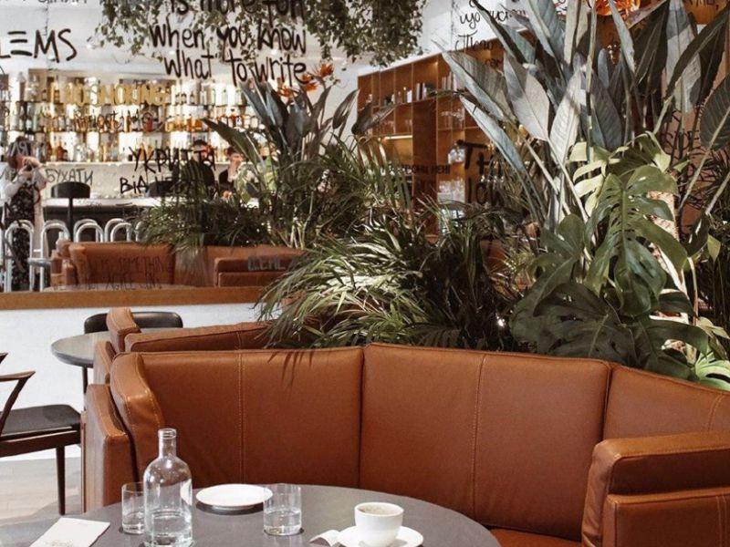 Меню ресторана Forever Young (Форевер Янг) в городе Киев, отзывы клиентов ⭐ TipMyMenu